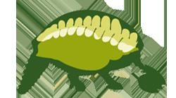 Reunión de Comunicaciones de la Asociación Paleontológica Argentina logo
